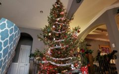 The Go-To Station: Holiday Traditions Edition