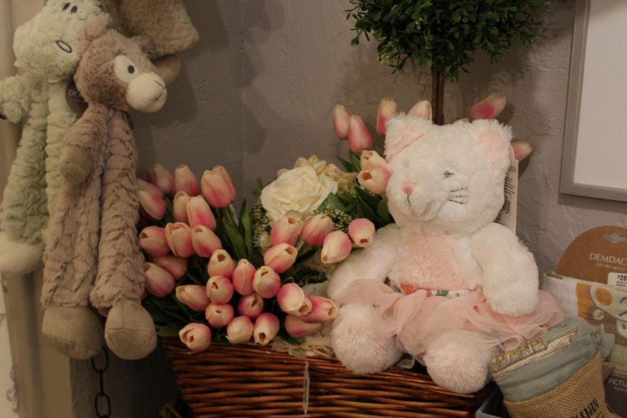 Photo of teddy bear in local shop.