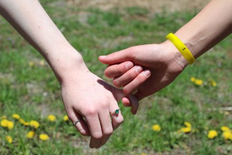 SEW Coalition Works to Mend Mental Health
